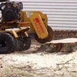37 stump chipping